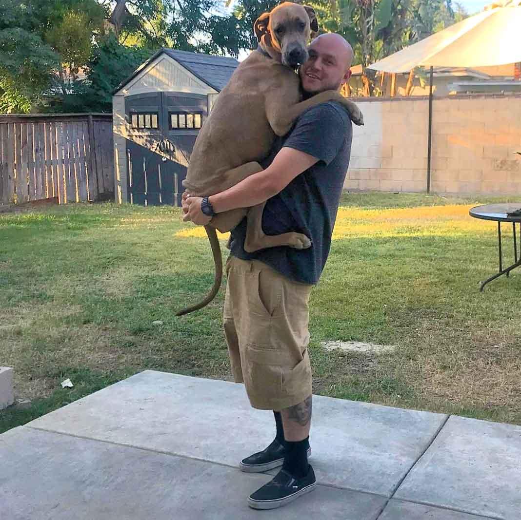 Como vemos, Mike adira a su perro