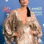 Maya ganó el Ariel a mejor actriz y el premio en la misma categoría del Festival Internacional de Cine de Guadalajara