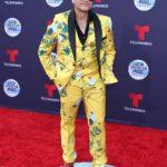 Elvis Crespo debió sentirse apenadísimo de robarle la cortina de grullas estampadas a su mamá, que no se quitó las gafas para evitar ser reconocido