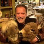 Qué simpático ver a 'Terminator' acaramelado con sus mascotas