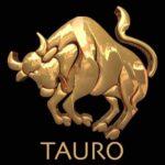 Tauro_New